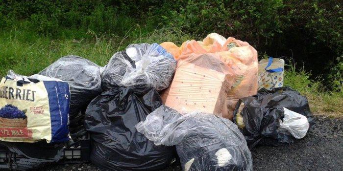 RIFIUTI – Sacchi abbandonati lungo la strada, la segnalazione al Comune