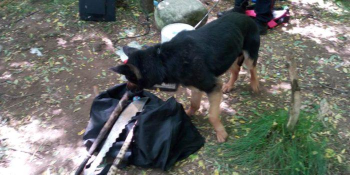 SESSO E DROGA – Arresti e controlli dei carabinieri in tutto il Comasco